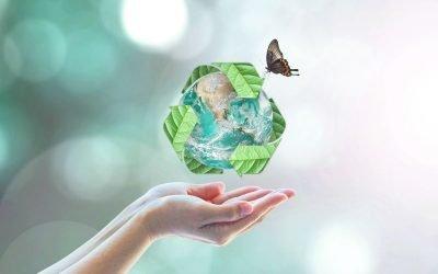 Biodegradabile, compostabile, riciclabile, riciclato: i volti del packaging sostenibile.